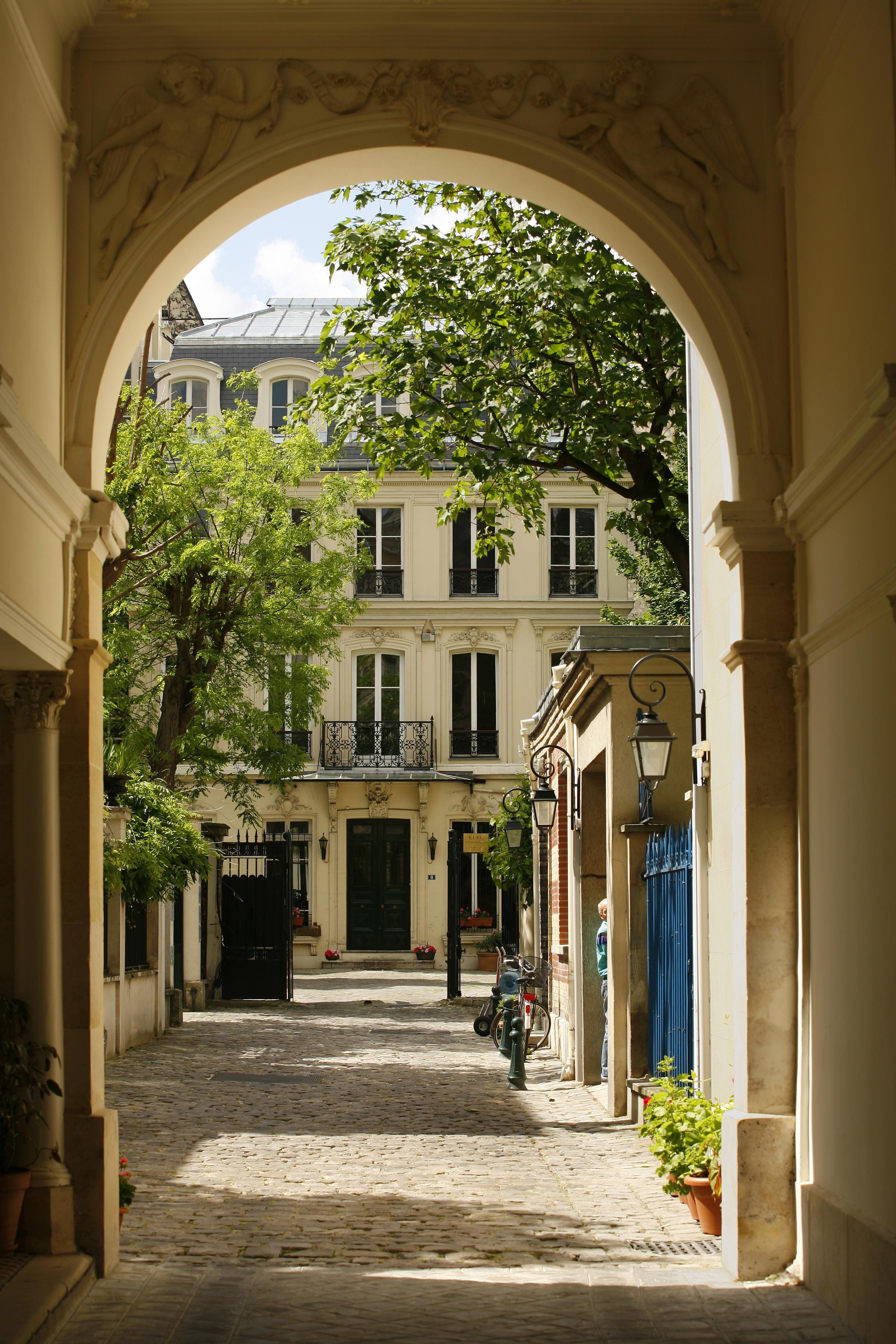 Elfe Paris Adult French Courses Cactus Language