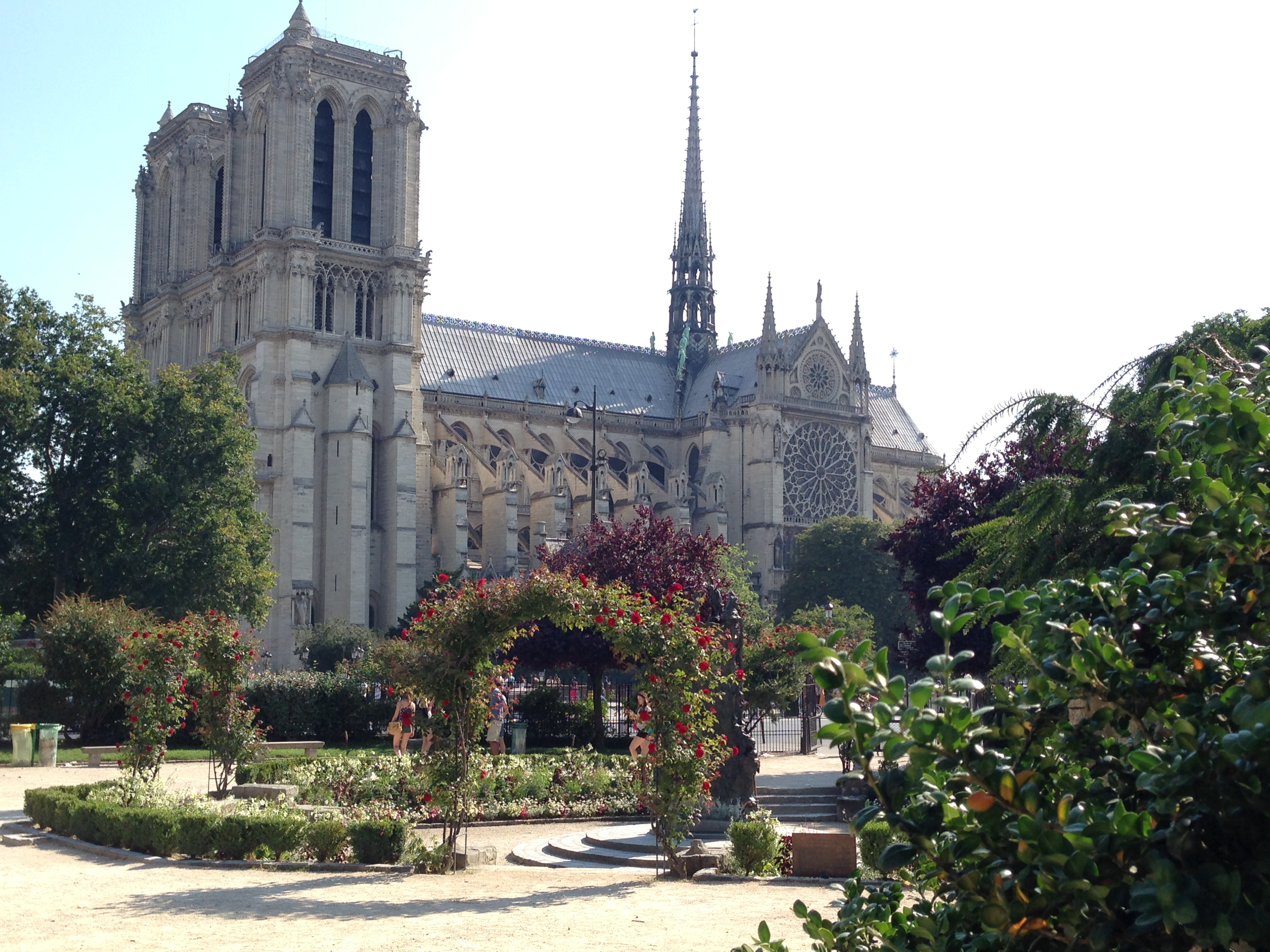 french course in paris for adults