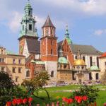 Polish Courses Poland Krakow