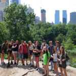 English Summer Camps New York