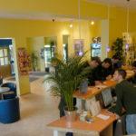 Accommodation at DID Munich school - Hackerbrucke Youth Hostel